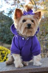 Ultra Violet Sport Hoodie