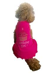 Birthday Girl Cupcake Dress