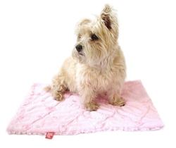 Square Blanket, Pale Pink Roses