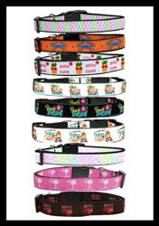 Summer Time Collection Nylon Collars & Leads