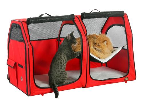 Cat Show House - Double
