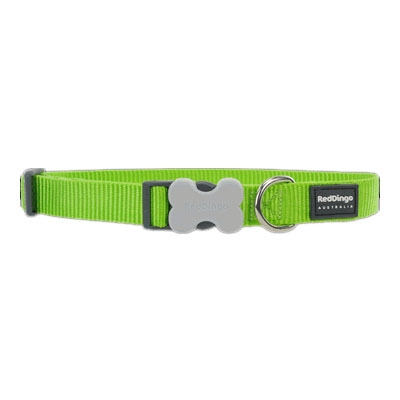 Lime Green Dog Collars, Leashes, & Harnesses