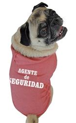 Agente de Seguridad Hoodie