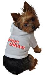 Papi Chulo Hoodie