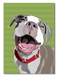Birthday: Pitbull Smile
