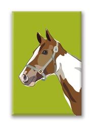 Horse, Pinto Fridge Magnet