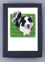 Border Collie - Grrreen Boxed Note Cards (NEW)