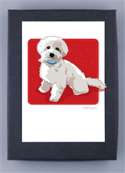 Maltipoo - Grrreen Boxed Note Cards (NEW)