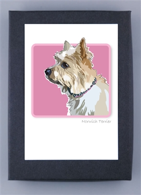Norwich Terrier - Grrreen Boxed Note Cards (NEW)