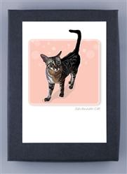 Savannah Cat - Grrreen Boxed Note Cards (NEW)