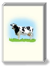 Holstein Cow Box Notes (1 box/pk)