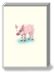 Pig Box Notes (1 box/pk)