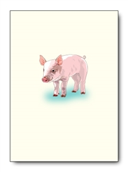 Pig Single Notes (6 cards/pk)