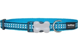 Reflective Bones Turquoise Dog Collar, Leads, and Harness