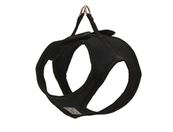 Step In Cirque Harness - Black