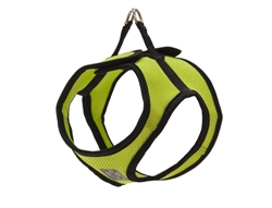 Step In Cirque Harness - Lime