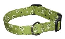 Mini Bandana (Green)
