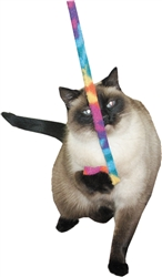 Cat Charmer