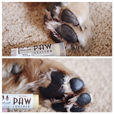 PawTection Trial - .15 oz Travel Stick