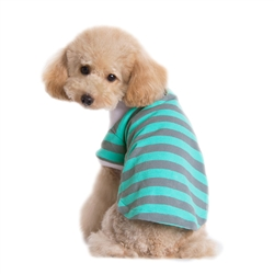 Stripe Polo Shirt Gray/Green