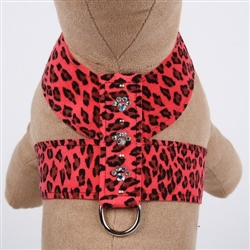 Crystal Paws Tinkie Harness Mango Cheetah Couture