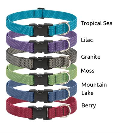 "LupinePet® 1"" EZ Eco pack, 6 pieces collars and leashes"