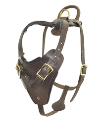 Viper Invader Working Dog Harness - Brass Hardware