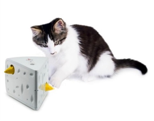 PetSafe® Cheese Cat Toy