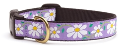 Daisy Collars and Leashes by Up Country