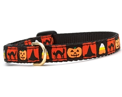 Halloween Cat Collection