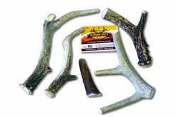 Split Extra Large Elk Antler 18/cs