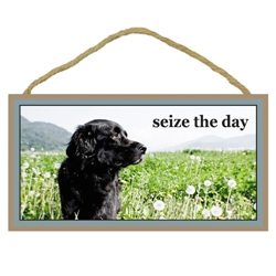 """Seize the Day Wooden Sign 5"""" x 10"""""""