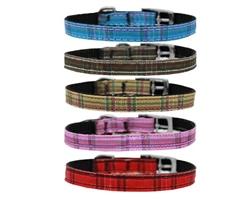 "Plaid Nylon Collar with Classic Buckle - 3/8"""