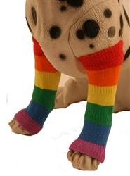 Pride Leg Warmers