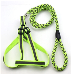 Green Adjustable 2-In-1 Dog Leash And Harness
