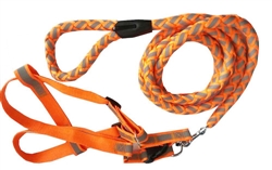 Orange Adjustable 2-In-1 Dog Leash And Harness