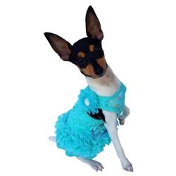Seafoam Garden Party Tutu Dress