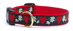 Hearts and Flower Collars and Leashes by Up Country