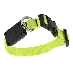 Nite Dawg™ LED Light Up Dog Collar XS - Neon Yellow