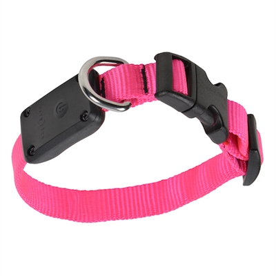 Nite Dawg LED Light Up Dog Collar XS - Neon Pink