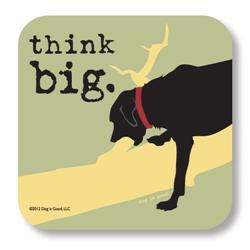 Think Big Coaster