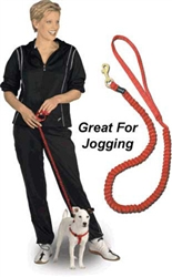 Drag-Free™ Leash Extends to 8  feet  PTLJOG 3