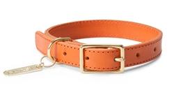 Leather Collar in Orange