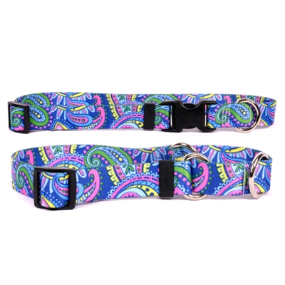 Paisley Power Collection