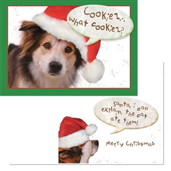 Holiday - Santa…I can explain… (6 pack)