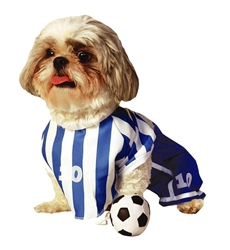 "Halloween 5pc Soccer Player Costume Lg (18-22"" nape of neck to base of tail)"