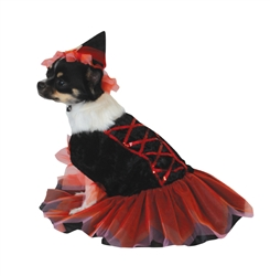 "Halloween 2 pc Good Witch Costume Med (14-17"" nape of neck to base of tail)"