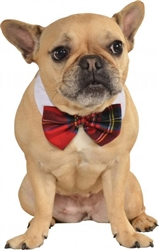 Rubie's Christmas Red Plaid Pet Bowtie
