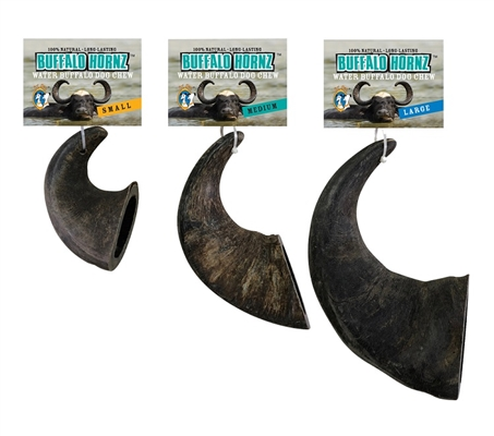 Water Buffalo Hornz MEDIUM Dog Chew