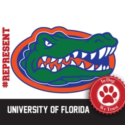 University of Florida Collars, Leads & Harnesses